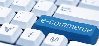 indagineIstate-commerce